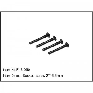F18-050 Socket screw 2x16.6mm